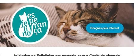 Site criado para Projeto Felino Esperança